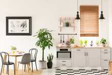 Real Photo Of Bright Kitchen I...