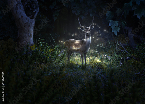 Fotografia Hirsch und Glühwürmchen im Wald