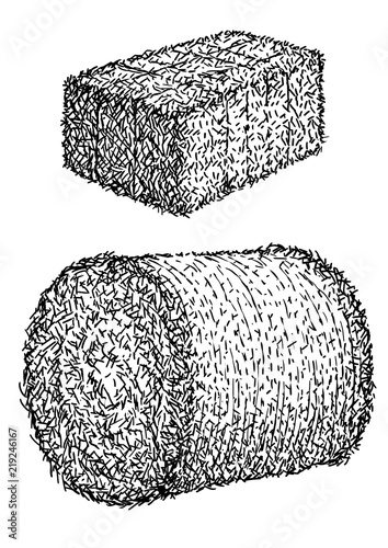 Hay, bale illustration, drawing, engraving, ink, line art, vector Wallpaper Mural