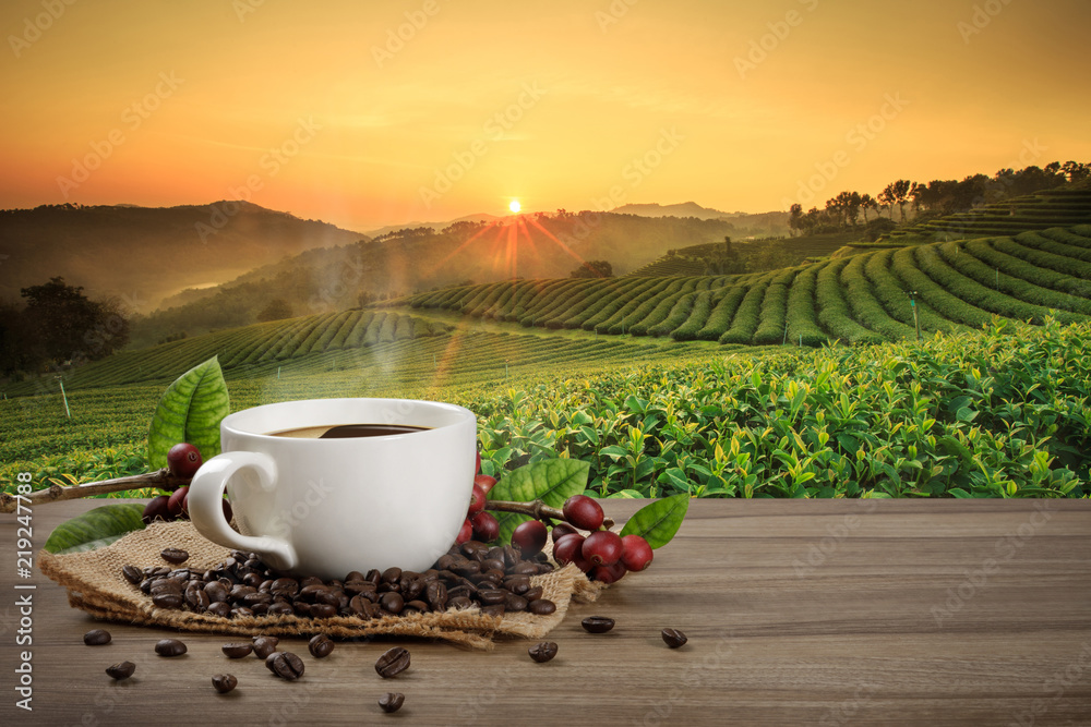 Fototapeta Hot coffee cup with fresh organic red coffee beans and coffee roasts on the wooden table and the black background with copyspace for your text.