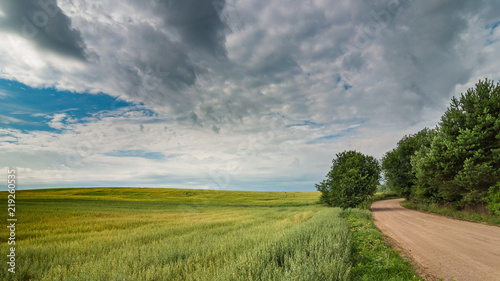 summer rural landscape. a dirt road along the agricultural field under a beautiful cloudy sky