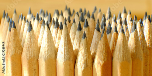 Fotografie, Obraz  Packing of simple pencils