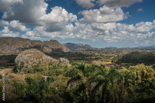 Fotomural  Vinales Valley // Tal