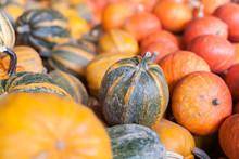 Pumpkins, Autumnal Harvest, Small Pumpkin, Texture Or Autumn Background