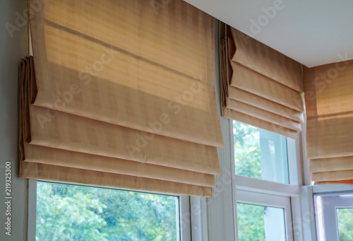 Fotografie, Obraz  brown roman blind shade curtain tree forest mountain background living room