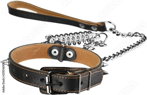 Dog Collar with Leash Isolated Fototapet