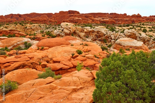 Poster Oranje eclat Beautiful landscape in natural colors at Arches National Park in Utah, USA