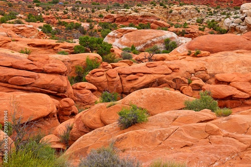 Papiers peints Corail Beautiful landscape in natural colors at Arches National Park in Utah, USA