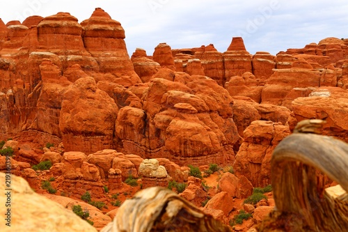 Foto op Plexiglas Rood traf. Beautiful landscape in natural colors at Arches National Park in Utah, USA