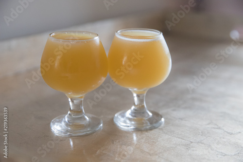 IPA Craft Beer Tasting Canvas Print