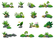 Collection Of Botanical Small ...
