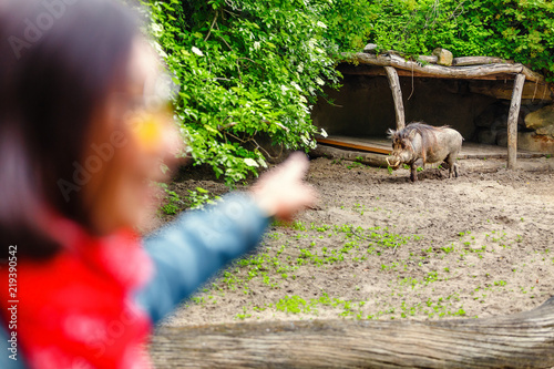 Photo  A frightened woman looks at the warthog male with tusks and bit of hair on the backspine running ahead