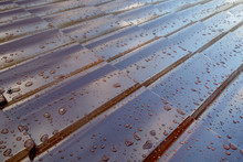 Fragment The Brown Metal Roof Of The House In The Form Of Roof Tiles With Many Drops After The Rain, An Obliquely Close Up