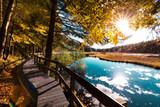 Fototapeta Forest - Paysage d'automne dans les Vosges alsace lac de Lispach
