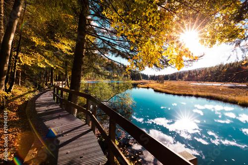 Fototapeta Paysage d'automne dans les Vosges alsace lac de Lispach