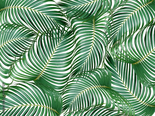 Ingelijste posters Tropische Bladeren mix leaf of palm tree background