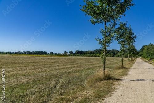 Foto op Aluminium Blauw Landscape view on a field in Germany