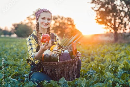 Fotografie, Obraz  Bäuerin verkauft gesundes und buntes Gemüse