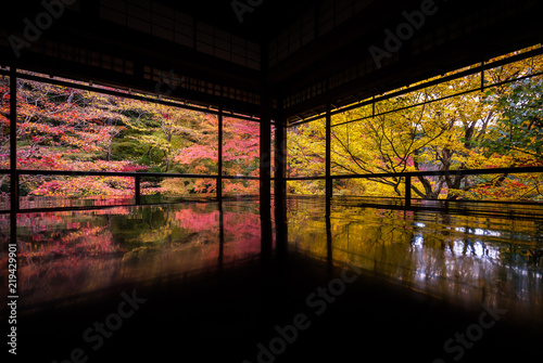 Printed kitchen splashbacks Kyoto 京都府 瑠璃光院 紅葉