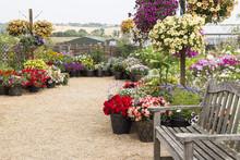Flowers Garden Court
