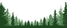 Forest Evergreen, Coniferous T...