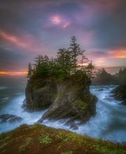 Sea Stack With Trees Of Oregon Coast