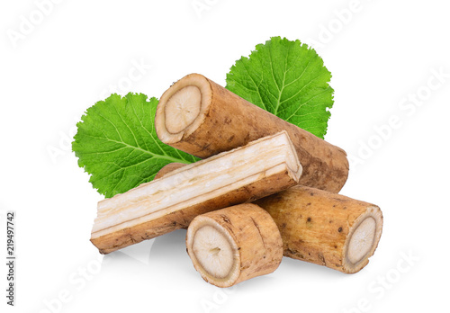 burdock roots or kobo with green leaf isolated on white background