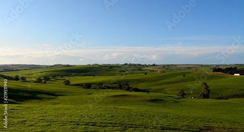 Foto-Tapete - Farming spring landscape (von William)