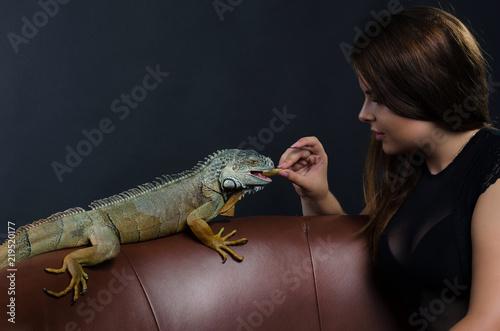 beautiful girl and big green iguana in the studio