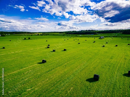 Fotomural Aerial view of round straw bales in black plastic in green field in rural Finland