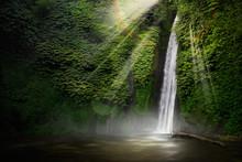 Waterfall Hidden In The Tropic...