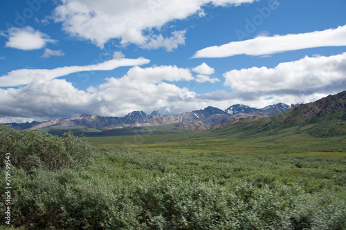 Denali National Park Green Transit Bus Tour