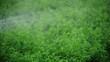 Irrigation System for farming