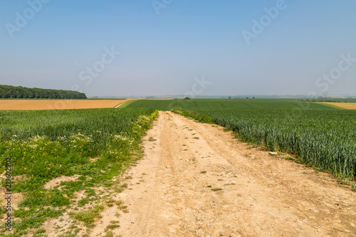 A French farm landscape, on a sunny spring day