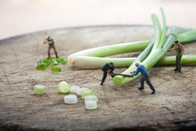 Miniature Figure  Workers Are ...