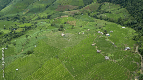 Foto op Aluminium Groene topview beautiful landscape view of rice terraces and house at chiang mai , Thailand. The village is in a valley among the rice terraces. Terraced Paddy Field in Mae-Jam Village chiang mai , Thailand.