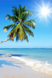 Welcome to Paradise! Sandy tropical beach with coco palms - Sandstrand mit Palmen, Sonne und Meer - Postkarte