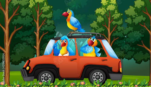 Staande foto Kids A group parrot on the car