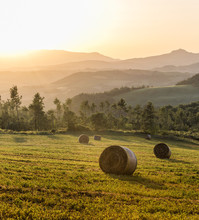 Bales Of Straw At Sunset In Tu...