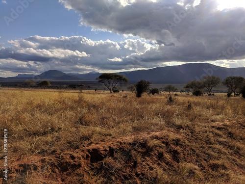 Kenya Tsavo East