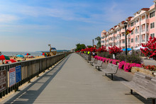 North Beach Maryland Boardwalk With Annuals In Full Bloom