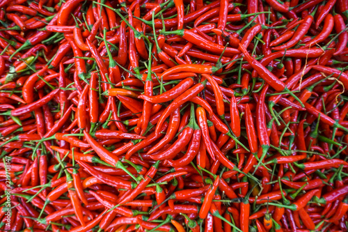 Hot Red chilli pattern Canvas Print