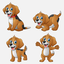 Cartoon Funny Dogs Collection ...