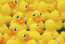 Yellow Toy Duck Floating In Th...