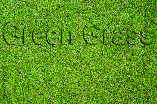 Fotografie, Obraz  Text Beautiful Green artificial grass background vignette or the naturally walls texture Ideal for use in the design fairly