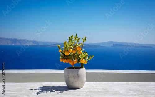 Foto auf Leinwand Santorini Beautiful santorini landscape
