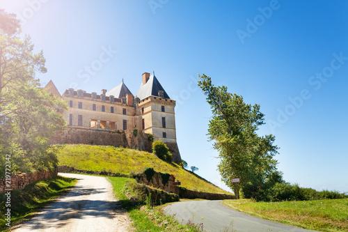 Foto op Plexiglas Kiev Road to the Chateau de Biron castle in France