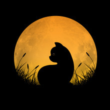Silhouette Of Cat Sitting In Grass Field With Full Moon Background, Vector Illustration