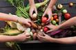 Organic farming harvest, fresh autumn dirt, root food.