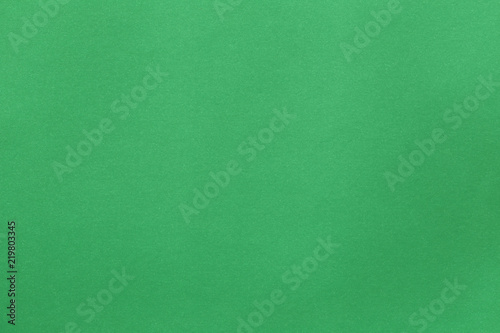 Fotografiet  surface of green art paper background.